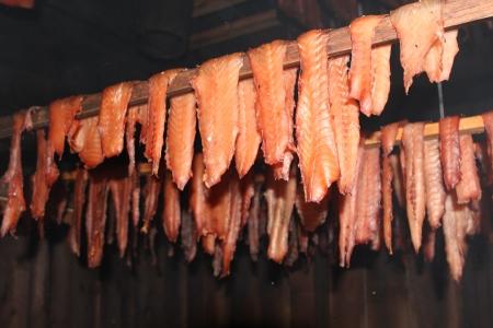 Salsibury - Kawis Salmon
